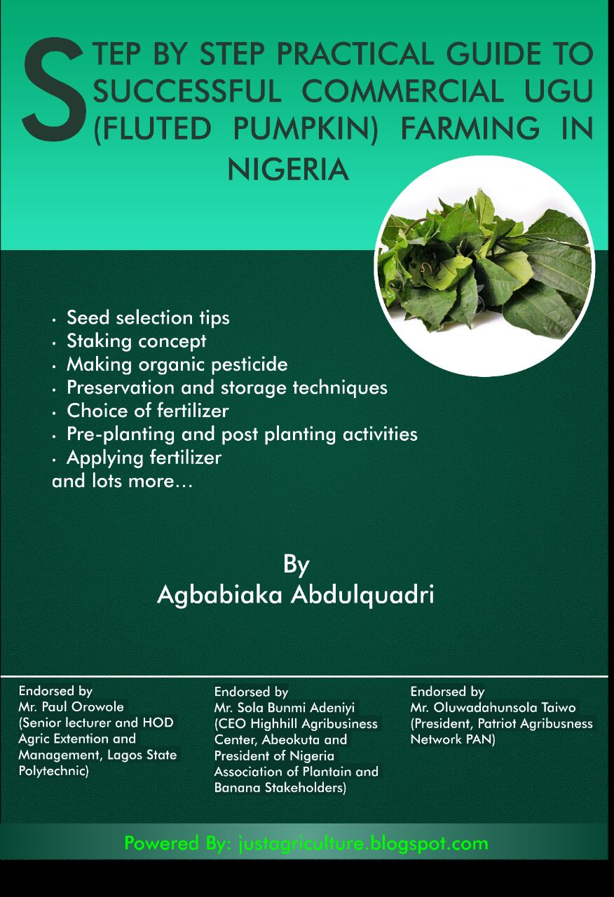 step by step practical guide to successful commercial ugu