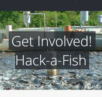 Fish Farming AgriHack 2016 Deadline Extended – 11 More Days to Apply