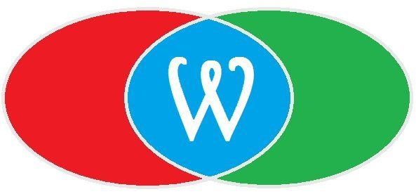 930 Wanda Logo Harrington Style