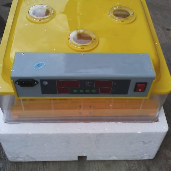 96 capacity egg incubator