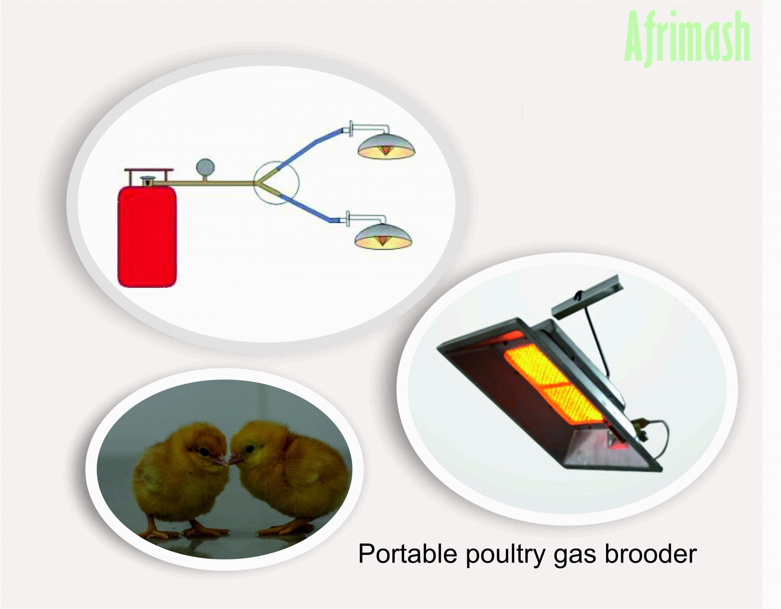 portable poultry brooder scaled