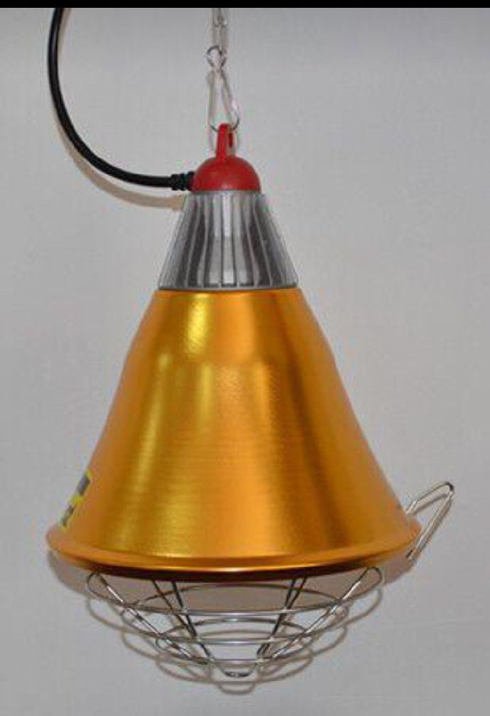 heating lamp