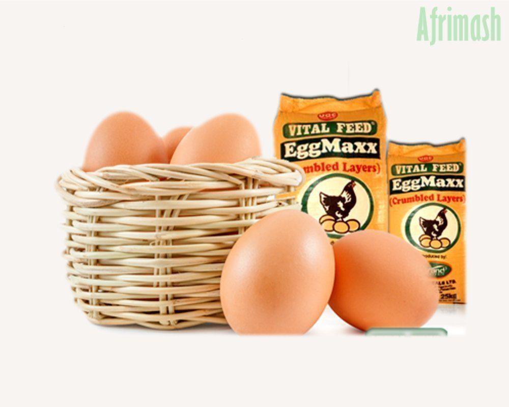 Vital Feed Eggmaxx