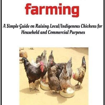 local chicken farming ebook cover