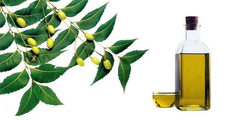 Neem Oil BEST STAIN REMOVAL