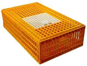 chicken transport crate