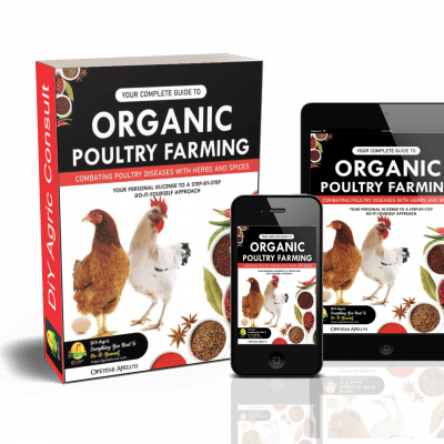 Guide to organic poultry farming