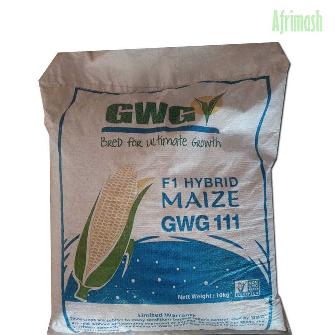 GWG111