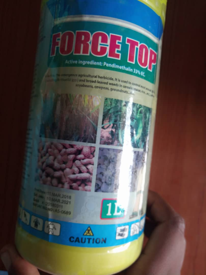 force top