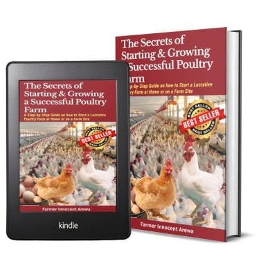 starting and growing a poultry farm