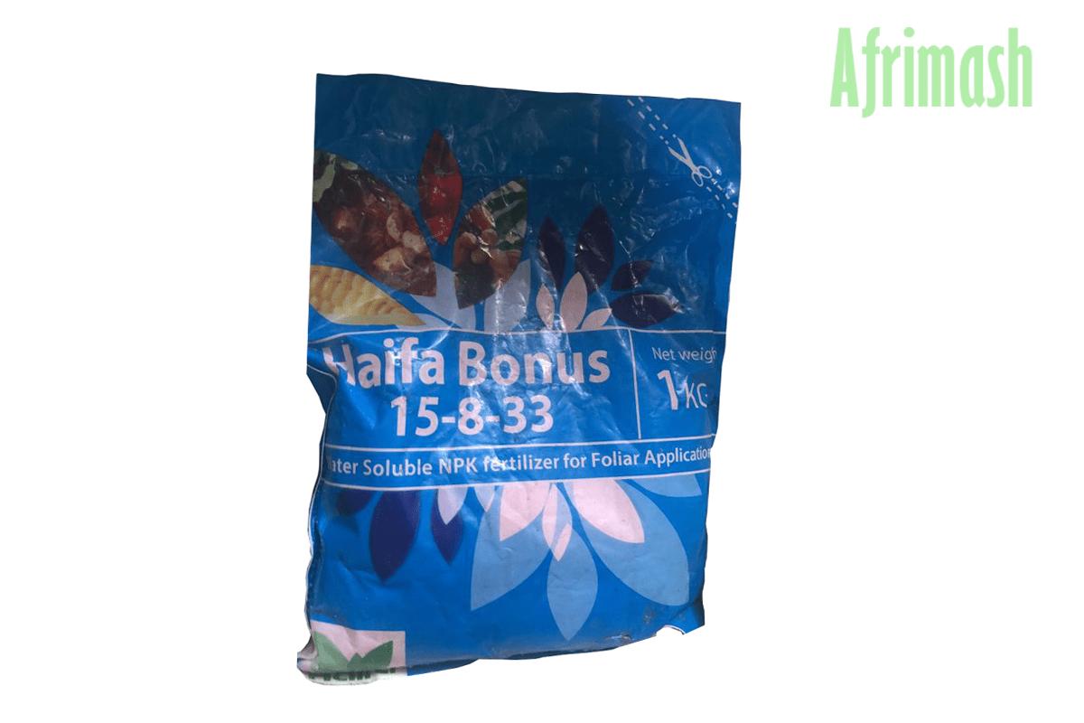haifa bonus