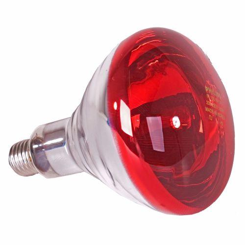 heat bulb