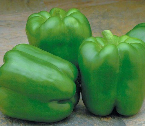sweet pepper Mekong F1