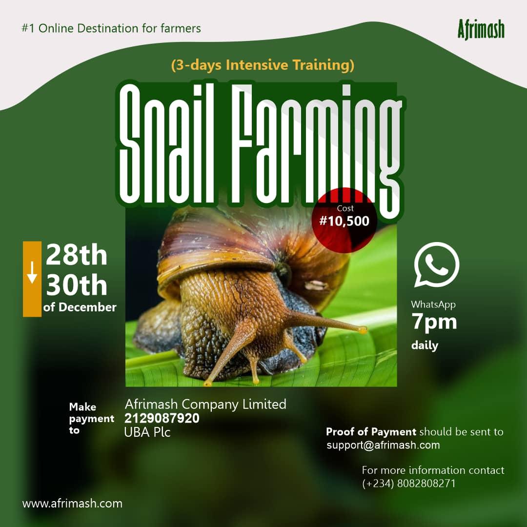 snail farming webinar