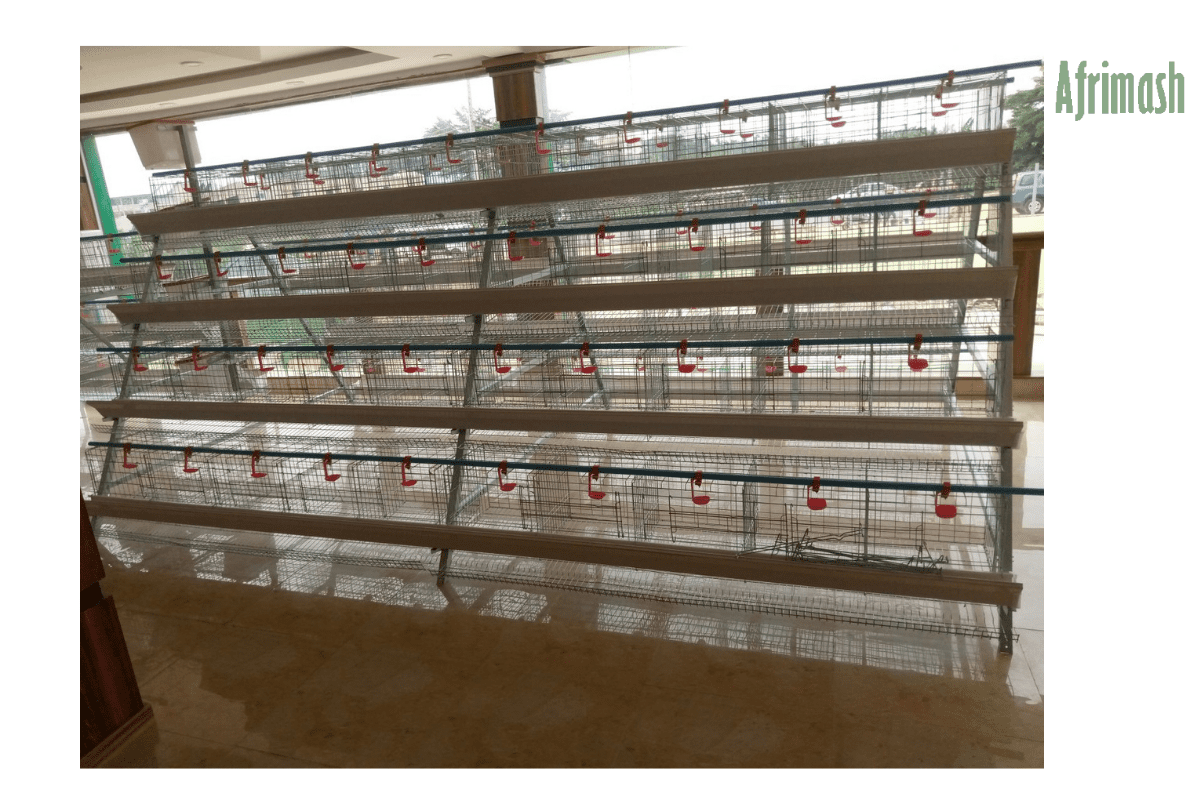 4 tiers Layer cages