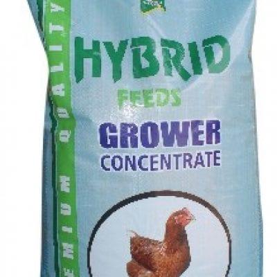 hybrid grower feed