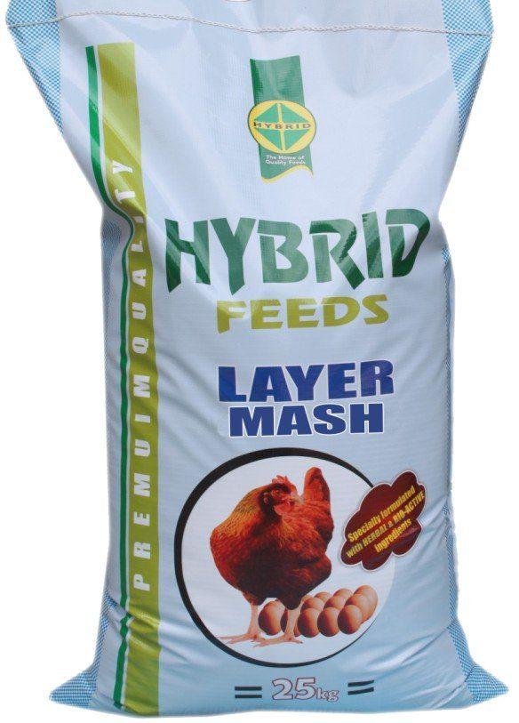 hybrid feeds layer mash