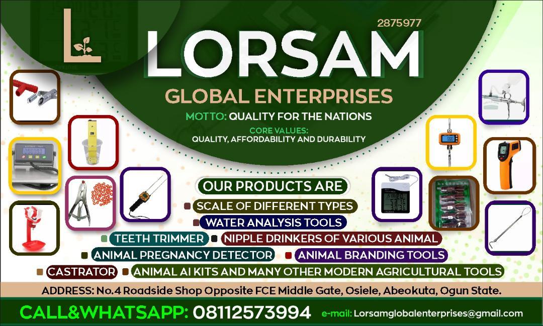 Lorsam Global Enterprises