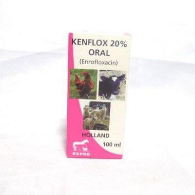 kenflox 100