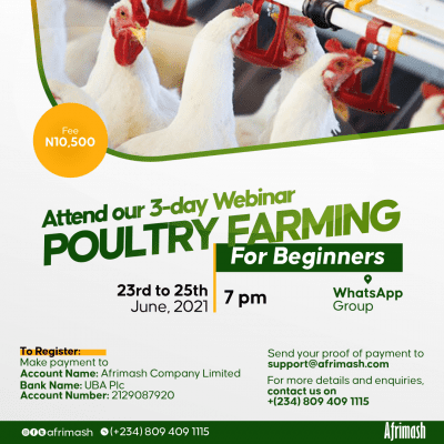 Poultry Training for Beginners