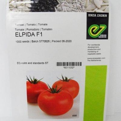 Beef Tomato Elpida F1