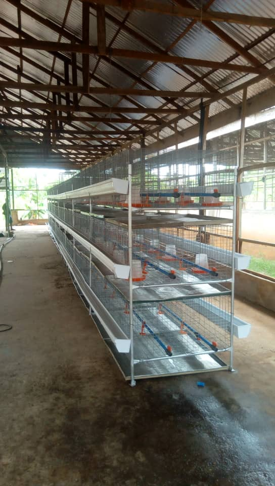 broiler battery cage