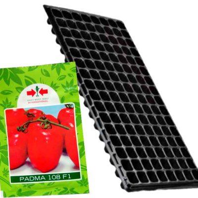 Tomato + Nursery Seedling Tray