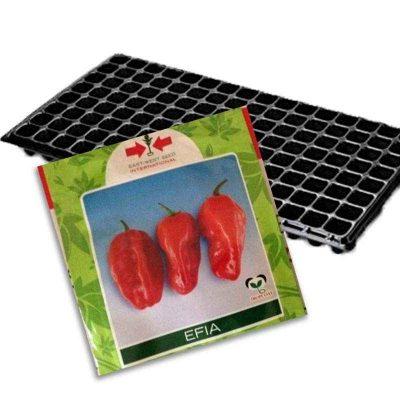 Pepper + Nursery Tray (Combo)