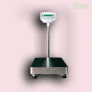 GFK 300M Bench/Floor Weighing Scale (300kg Capacity | 90 x 60cm Pan Size)