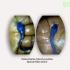 Heteroclarias Juveniles Hybrid (Special Maxi Brand)