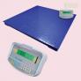 PT 310 Platform Scale with GK Indicator (3000kg Capacity | 100cm x 100cm Platform Size)
